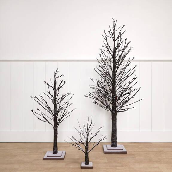 Starlight Trees Black