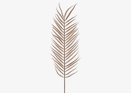 Tige de palmier haute Zyla latté