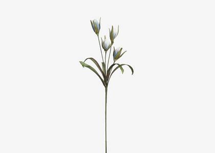 Shian Flower Branch Ballad Blue