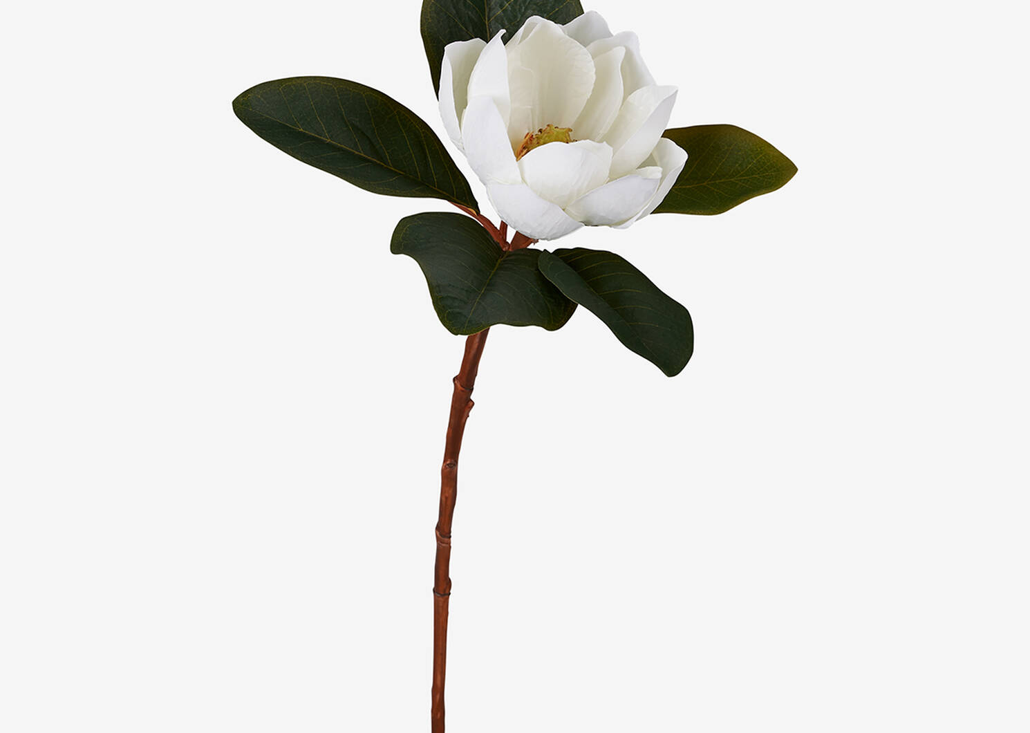 Kelli Magnolia Stem White