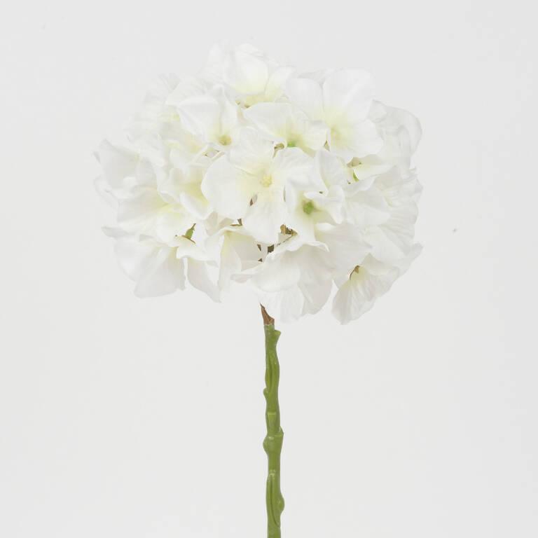 Tige d'hydrangée Shae blanche