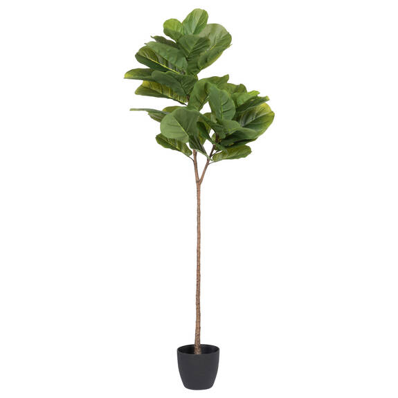 Joss Fiddle Leaf Tree Potted Large