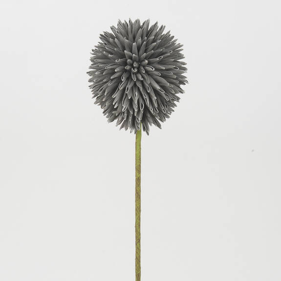 Katniss Allium Stem Grey