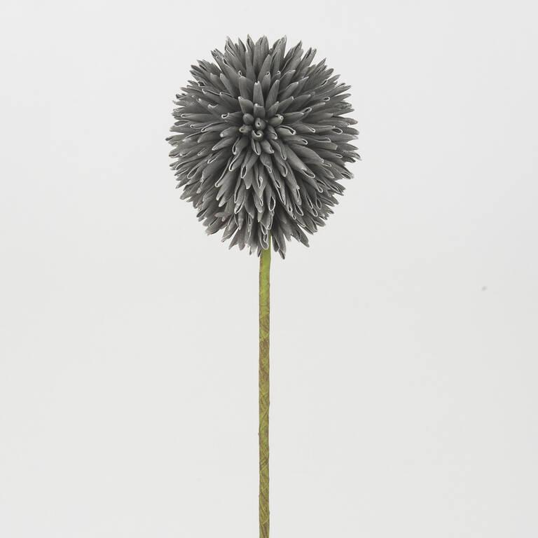 Katniss Allium Stem Grey