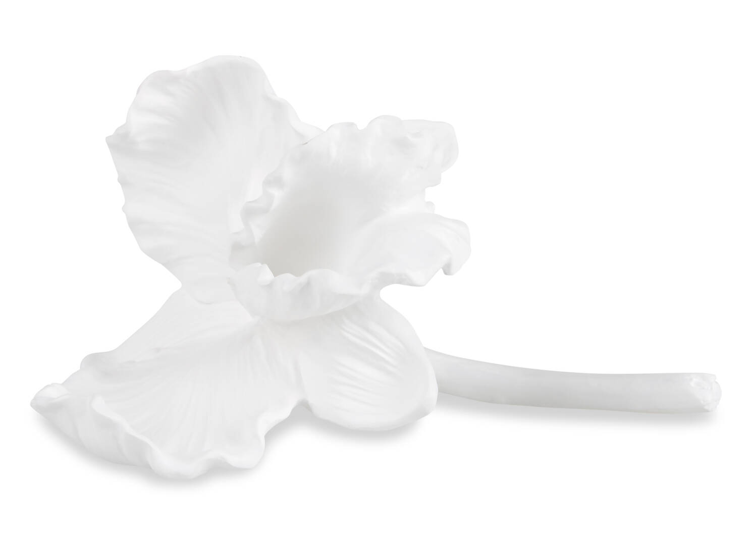 Décos orchidée Evanora -blanches
