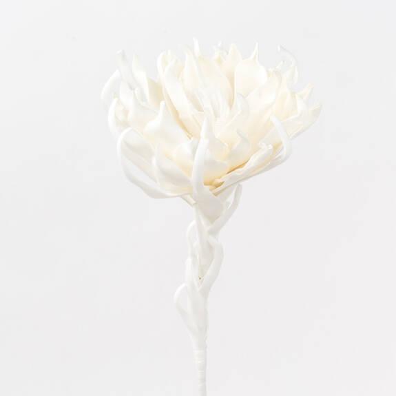 Ursa Flower White