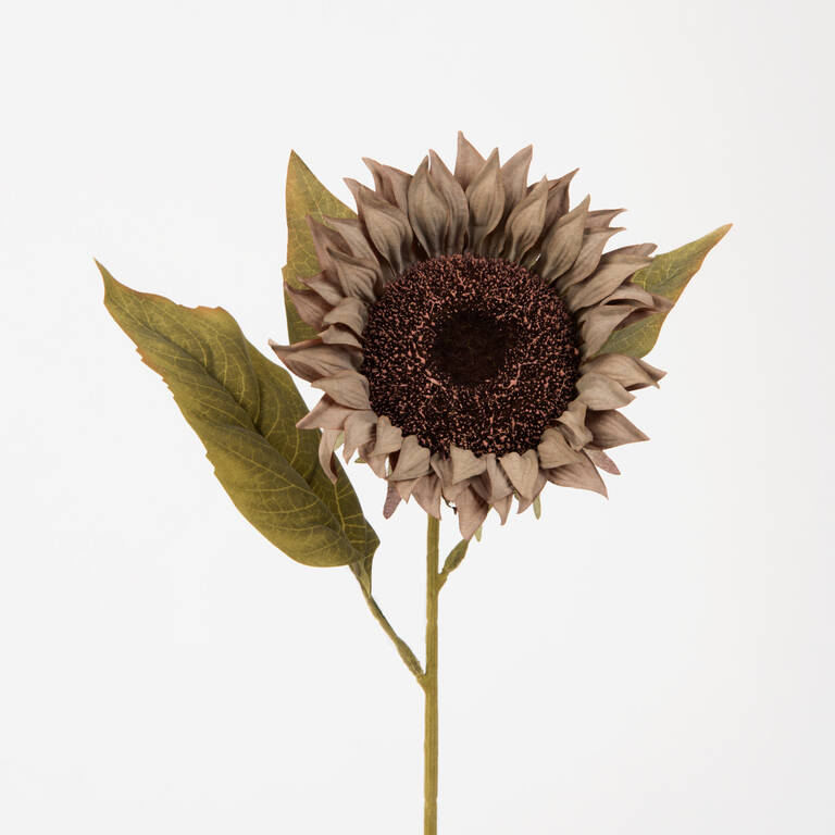 Gael Sunflower Grey