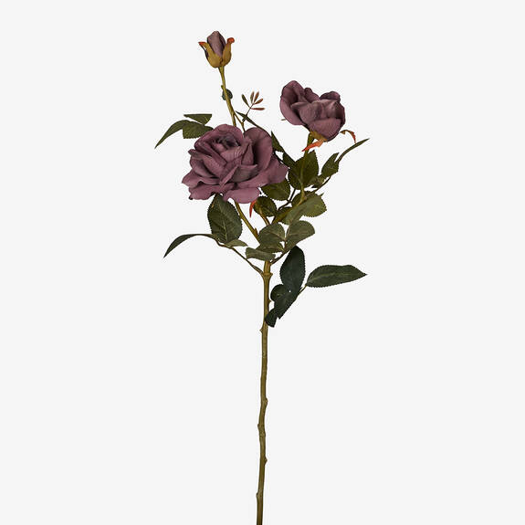 Tige de roses Amora violettes
