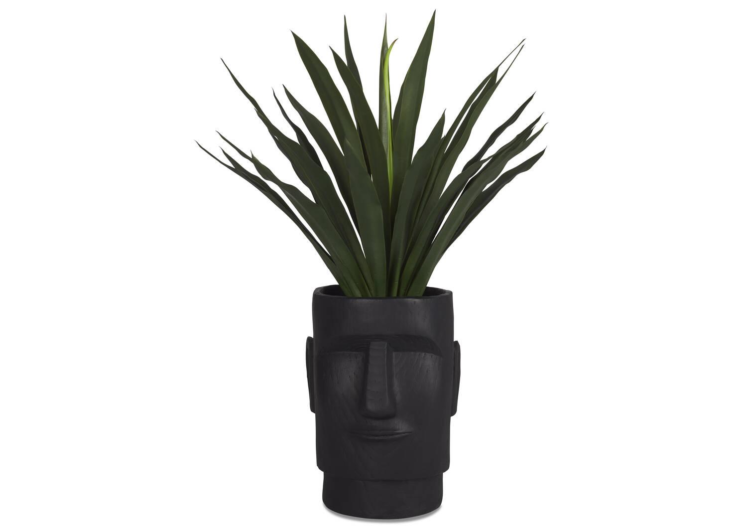 Hatui Planters Black