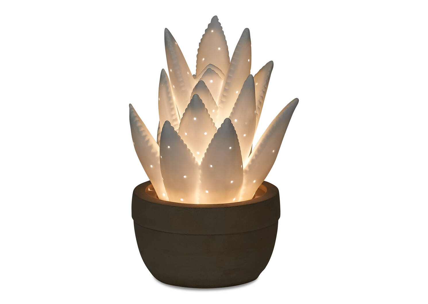 Lampe veilleuse agave Ally