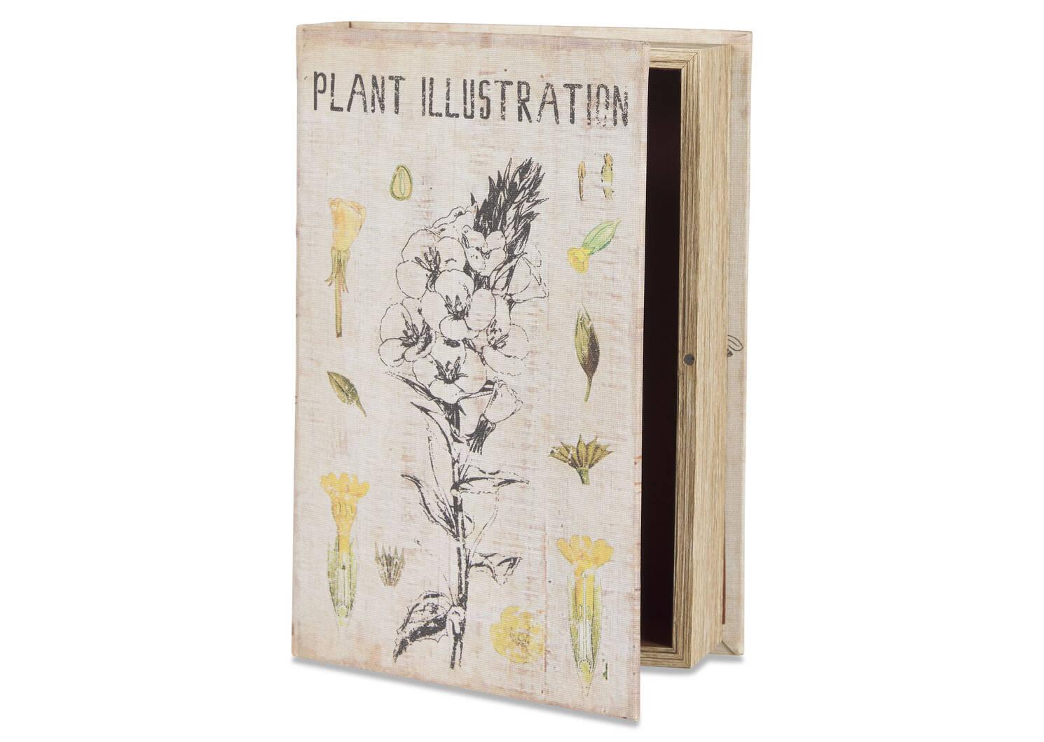 Grande boîte-livre Illustration ivoire