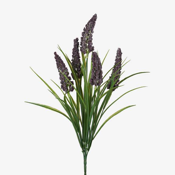 Bouquet de lavande Aislin violette
