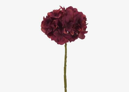 Shae Hydrangea Stem Red