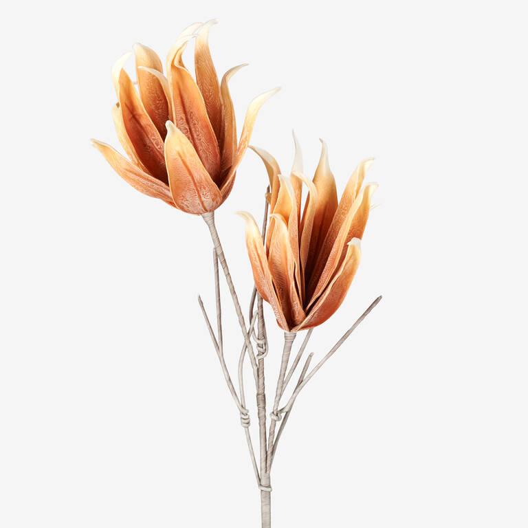 Cerro Flower Branch Umber