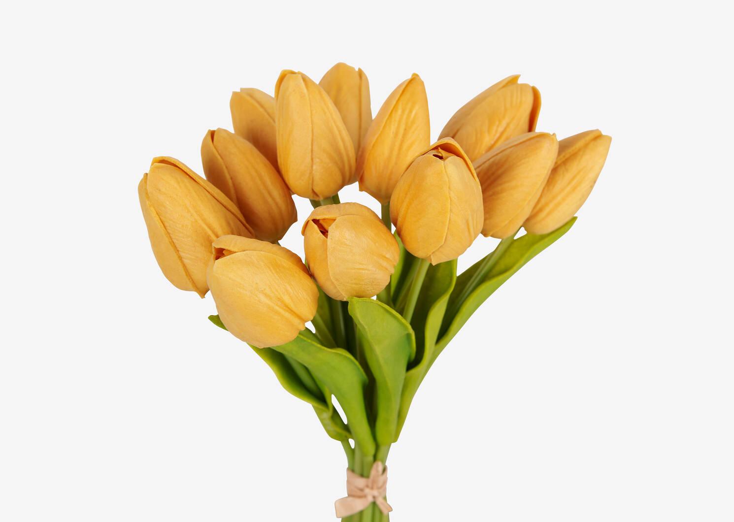 Berdine Tulip Bundle Cornsilk