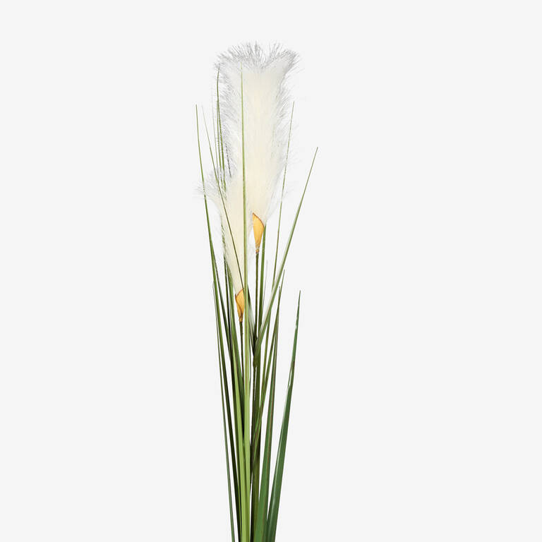 Adyn Bulrush Stem White
