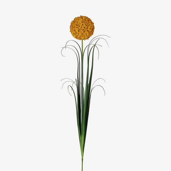 Bouquet d'alliums Sachi champ doré
