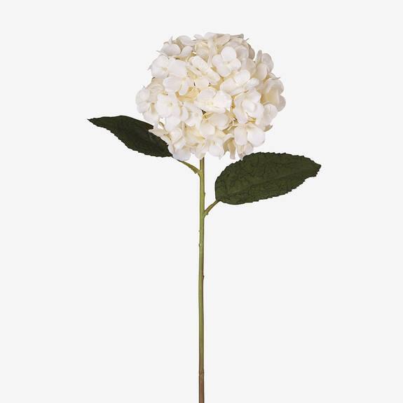 Sinay Hydrangea Stem Ivory