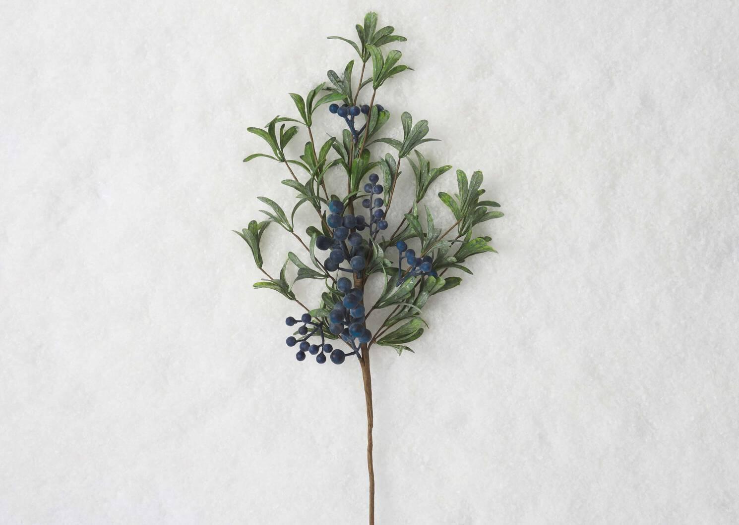 Afina Blueberry Pick