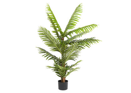 Raye Pearl Palm Tree Potted