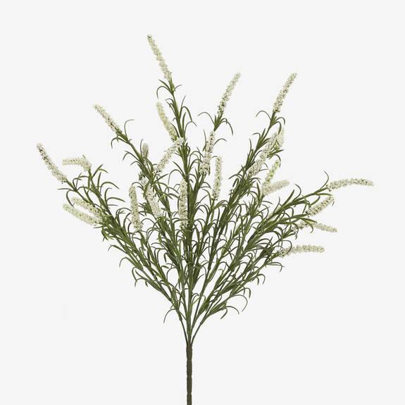 Layna Lavender Bush White