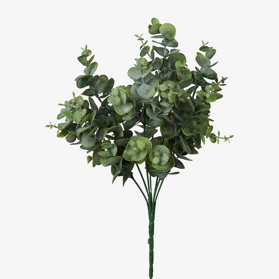 Bouquet d'eucalyptus Kadey