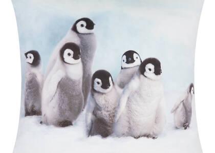 Coussin Penguin Chicks 20x20 blanc
