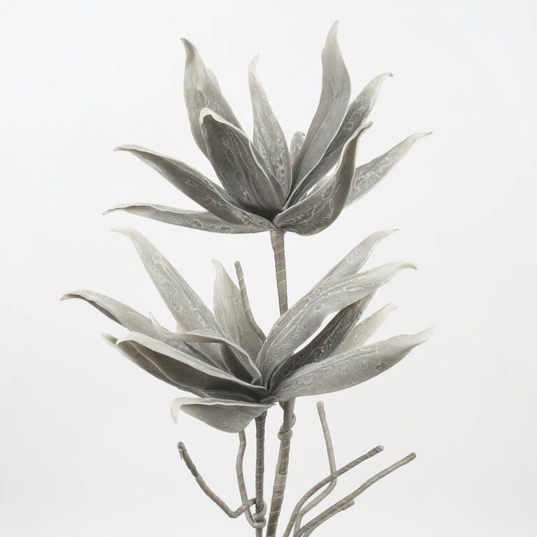 Tige de fleur Cerro grise