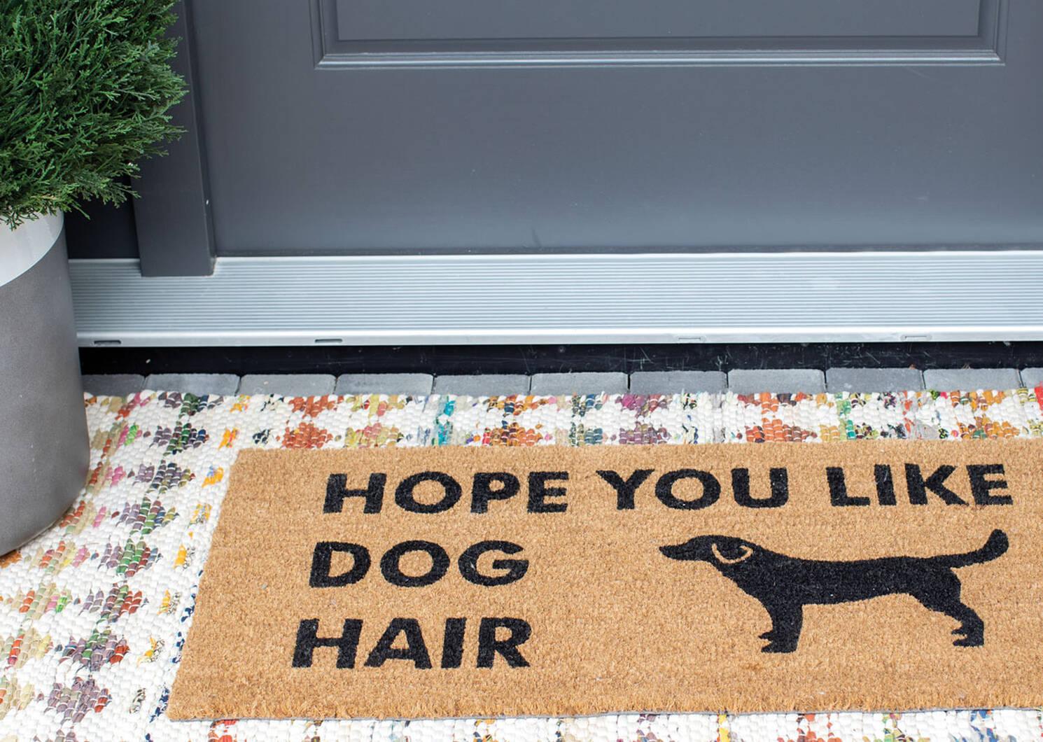 Dog Hair Doormat
