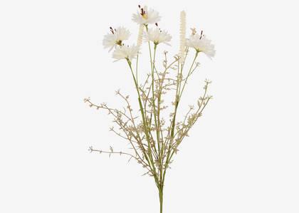 Tige de centaurées Rhona blanches