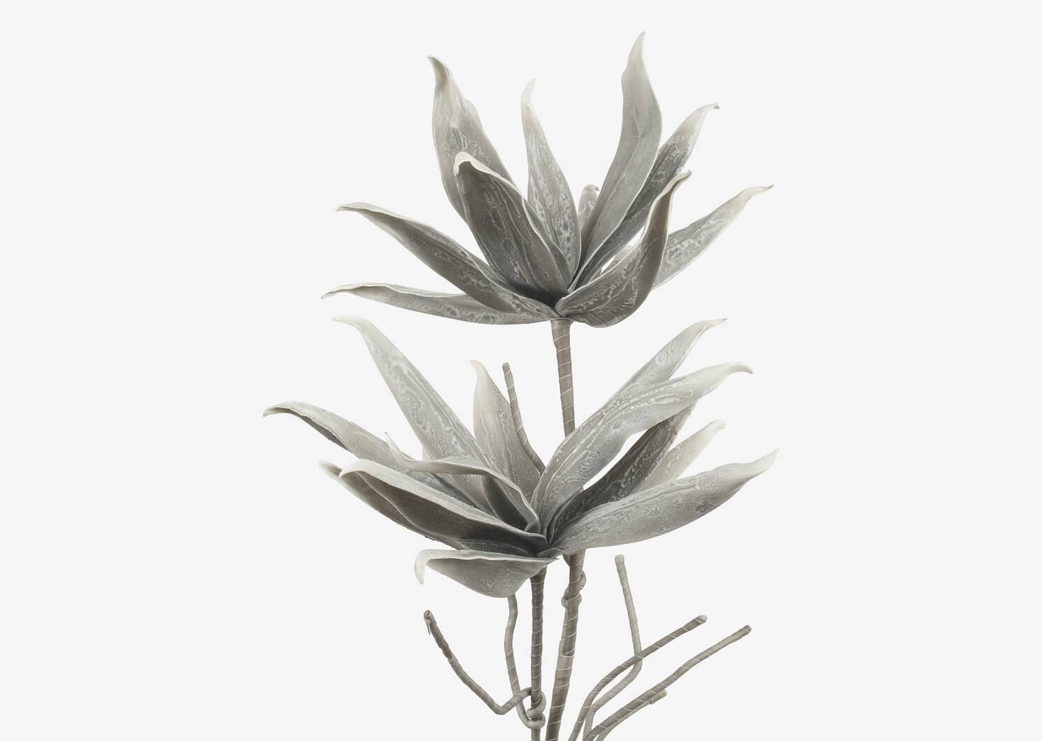 Cerro Flower Branch Grey