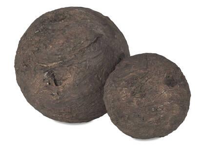 Thelon Balls
