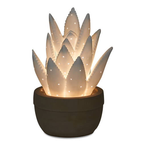 Ally Agave Glow Lamp