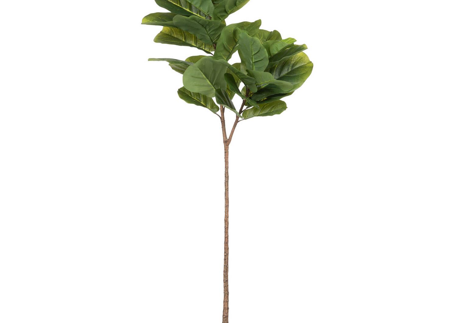 Joss Fiddle Leaf Tree Potted Large