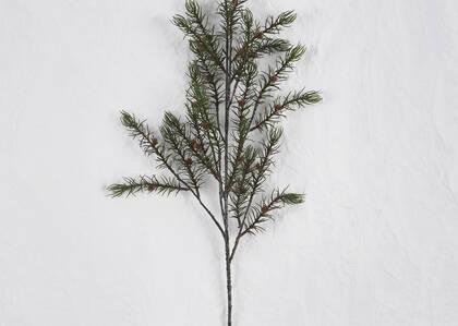 Branche de pin Oaklyn