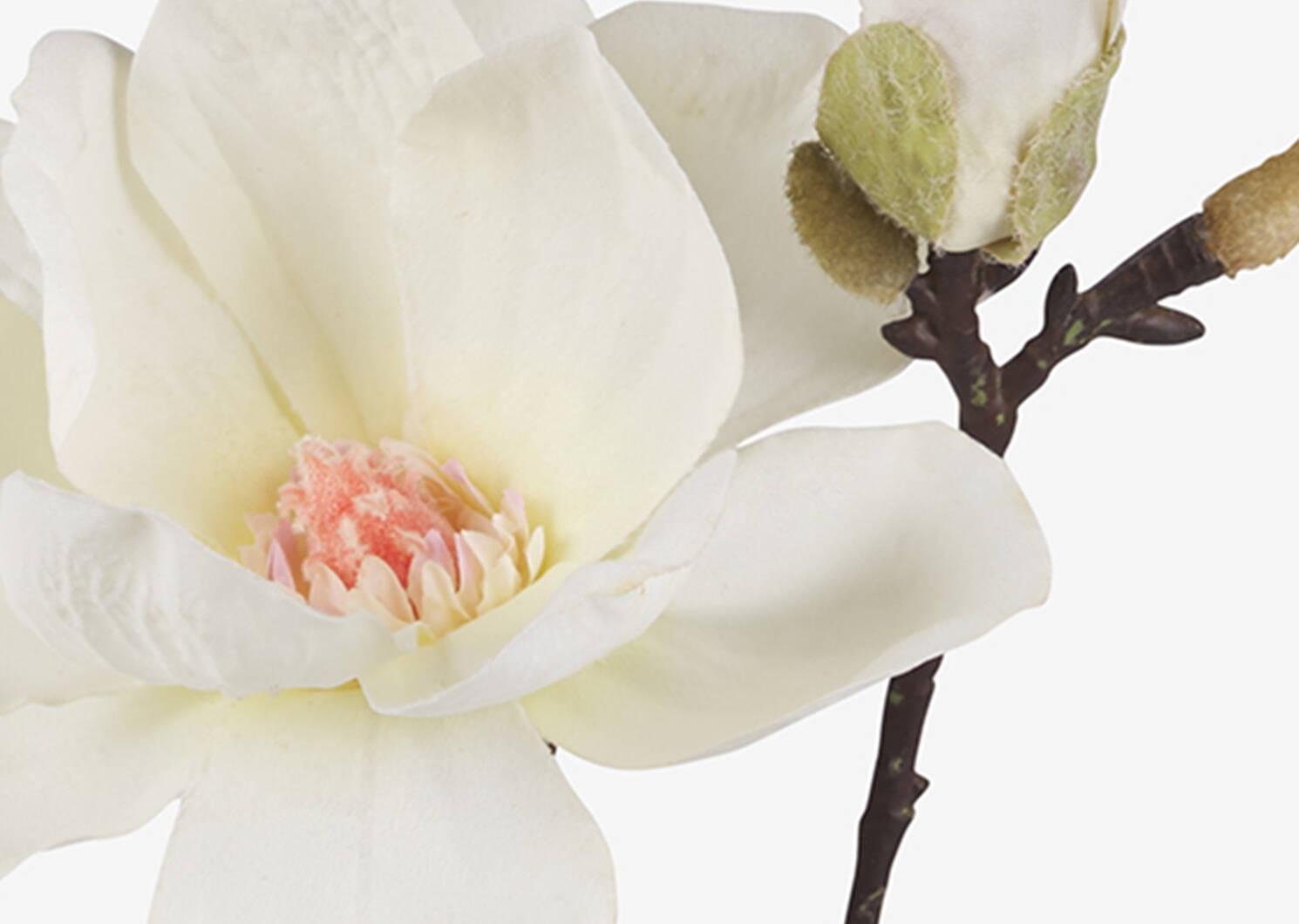 Emry Magnolia Stem Ivory