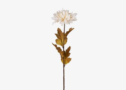 Tige de chrysanthème Albie blanc