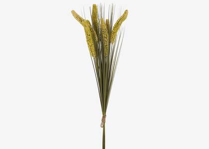 Krew Wheat Grass Bundle