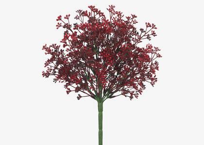 Bouquet de buis Neera