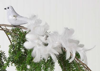 Dinah Long Tail Bird Orn White