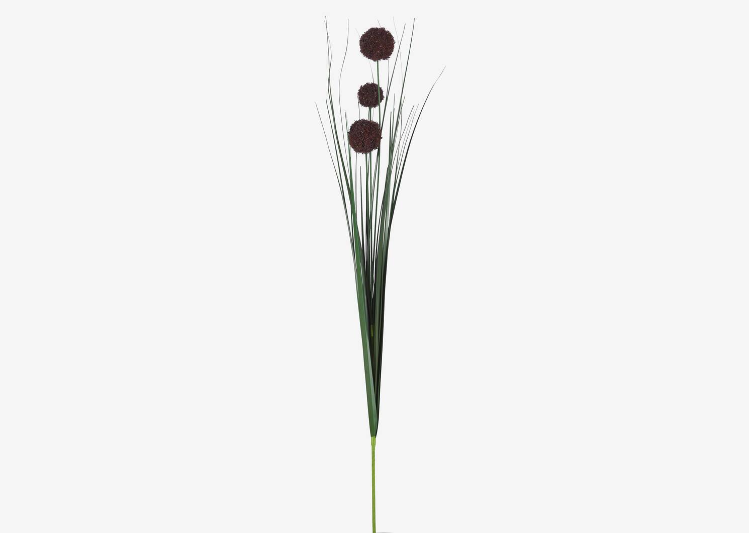 Bouquet d'alliums Heche porto