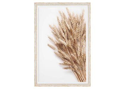 Sheaf Framed Print