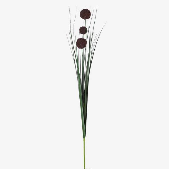Heche Allium Bunch Port