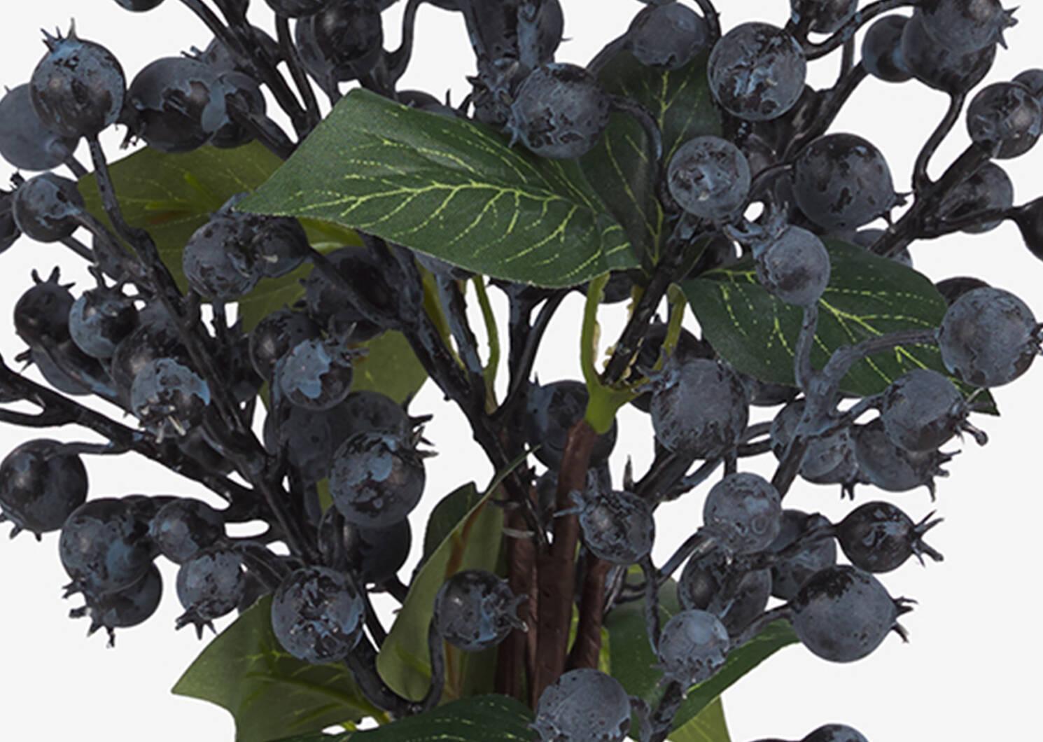 Adaline Blueberry Bunch