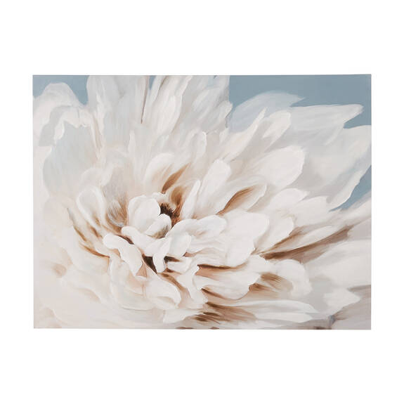 Paeonia Wall Art