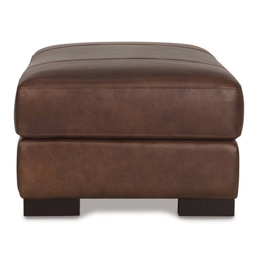 Whistler Leather Storage Ottoman -Coffee