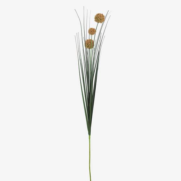 Bouquet d'alliums Heche champ doré