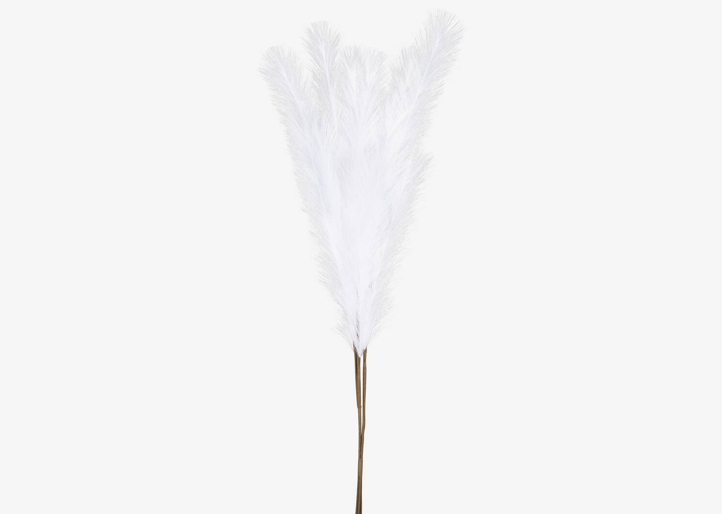Bouquet d'herbe de la pampa Marianna