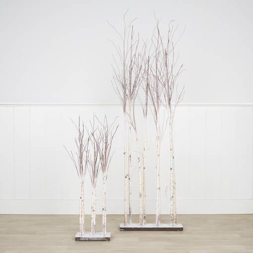 Branches de bouleau Illume