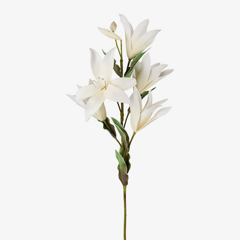 Bouquet de fleurs Kadal blanches